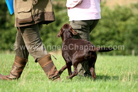 AC LRSE&C Gundog Training Day August 2009 295.jpg