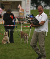 Nadder Valley Dog Show 2009