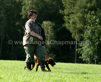 AC LRSE&C Gundog Training Day August 2009 519.jpg