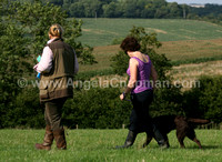 AC LRSE&C Gundog Training Day August 2009 444.jpg