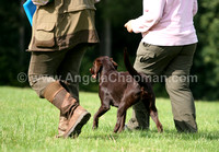 AC LRSE&C Gundog Training Day August 2009 296.jpg
