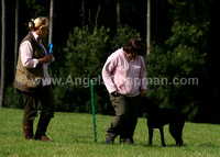 AC LRSE&C Gundog Training Day August 2009 302.jpg