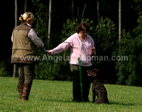AC LRSE&C Gundog Training Day August 2009 301.jpg